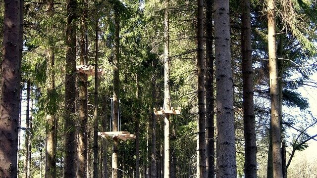 Bau des Kletterwald WInterberg