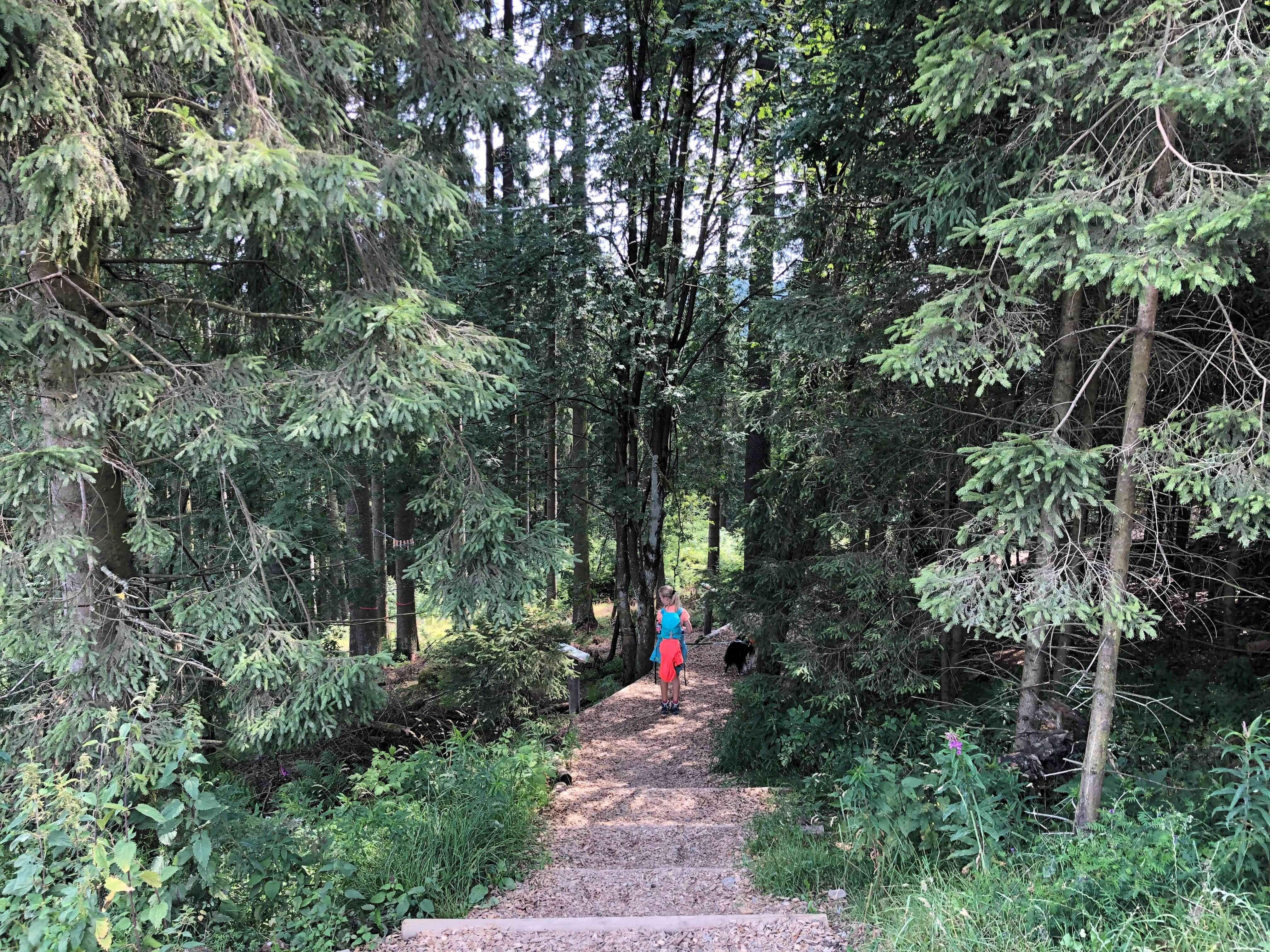 Familienausflug mit Hund zum Erlebnisberg Kappe