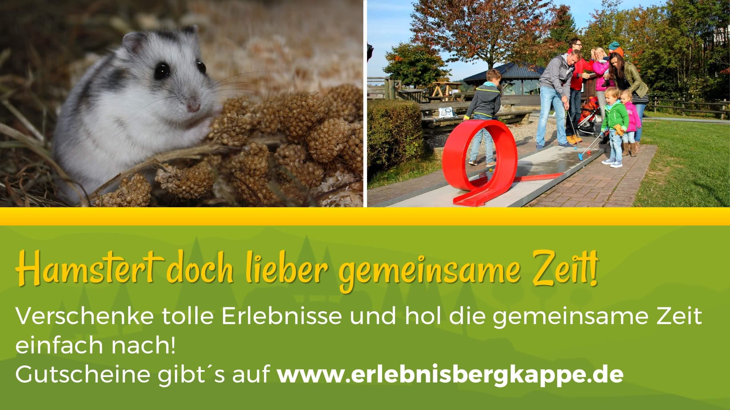 Gutscheine Erlebnisberg Kappe Winterberg (1)