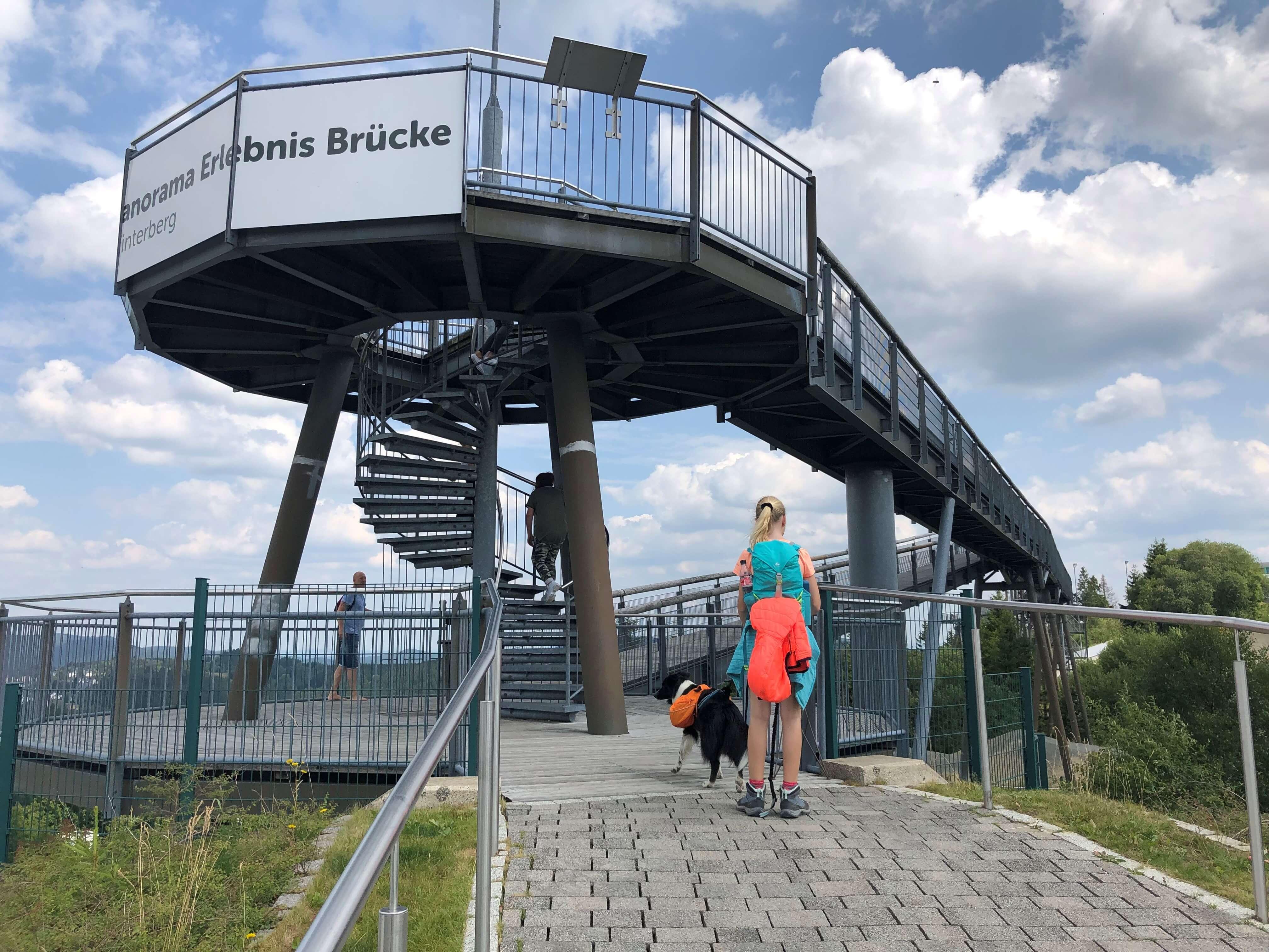 Hunde auf der Panorama Erlebnisbrücke in Winterberg