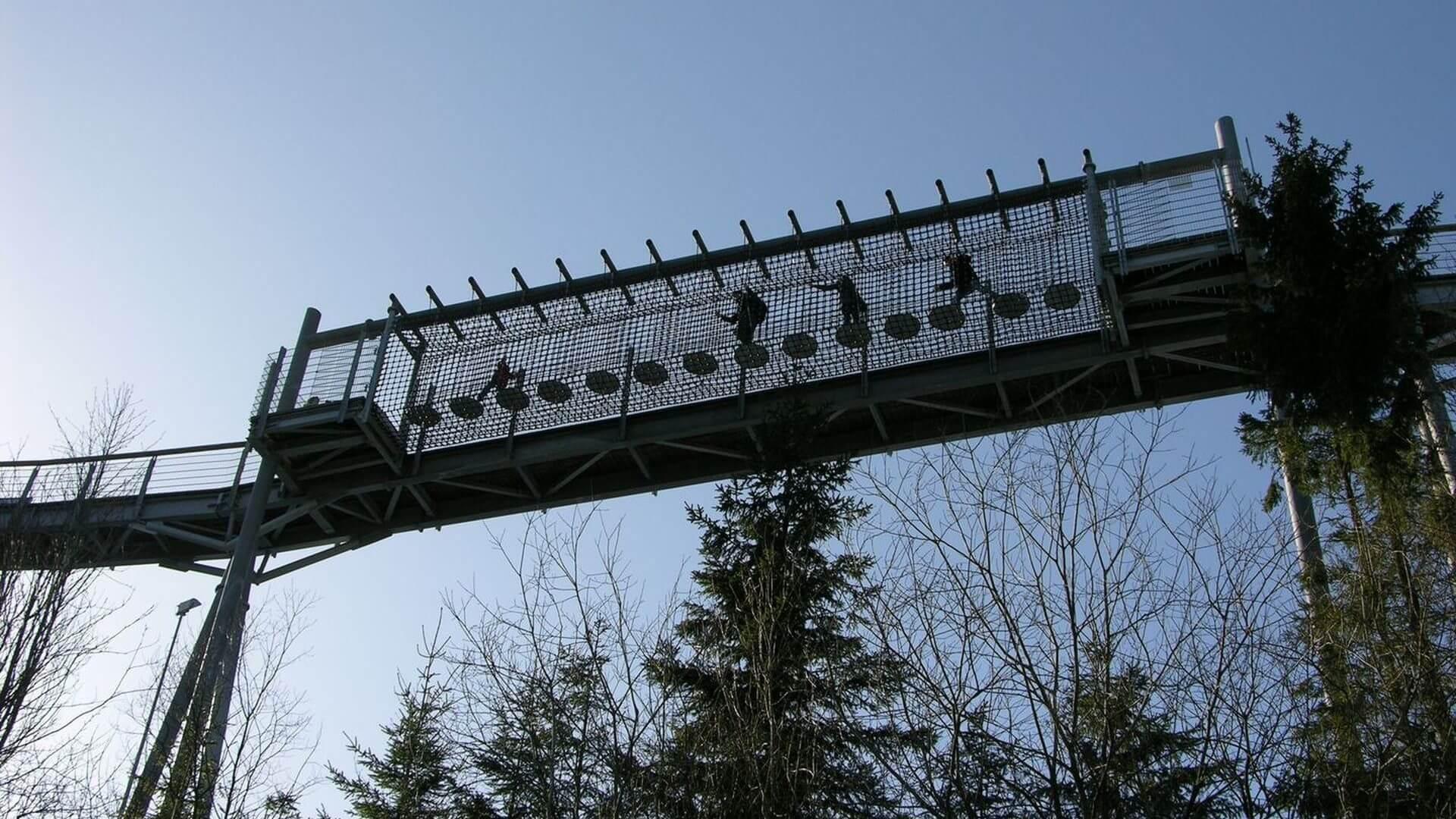 Klettern auf der Panorama Erlebnis Brücke in Winterberg am Erlebnisberg Kappe