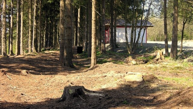 Kletterwald Winterberg im Bau